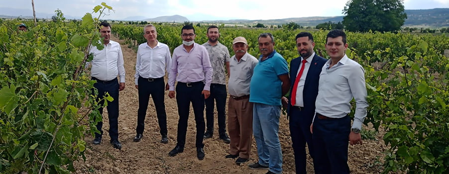 CHP genel merkezi görevlendirdi, Vekil Başevirgen doğal afette zarar gören tarım arazilerini inceledi