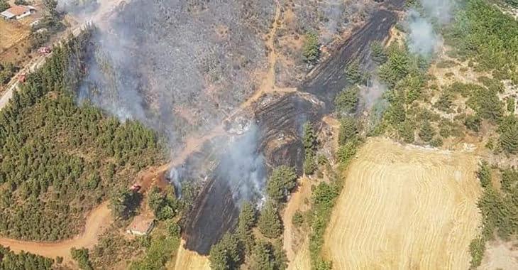 Acıpayam'daki orman yangını kontrol altına alındı!