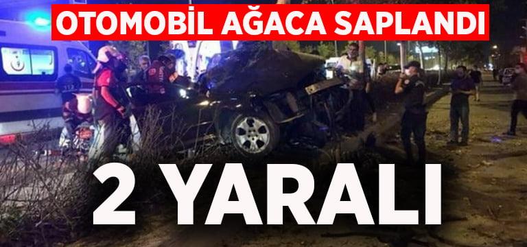 Otomobil ağaca saplandı: 2 yaralı