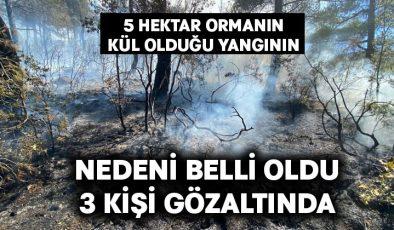 5 hektar ormanın kül olduğu yangının nedeni belli oldu