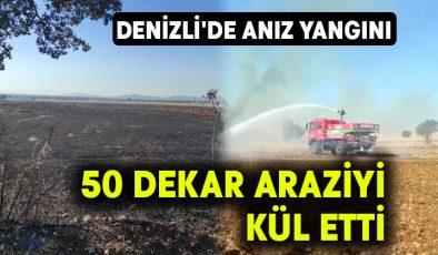 Denizli'de anız yangını 50 dekar araziyi kül etti
